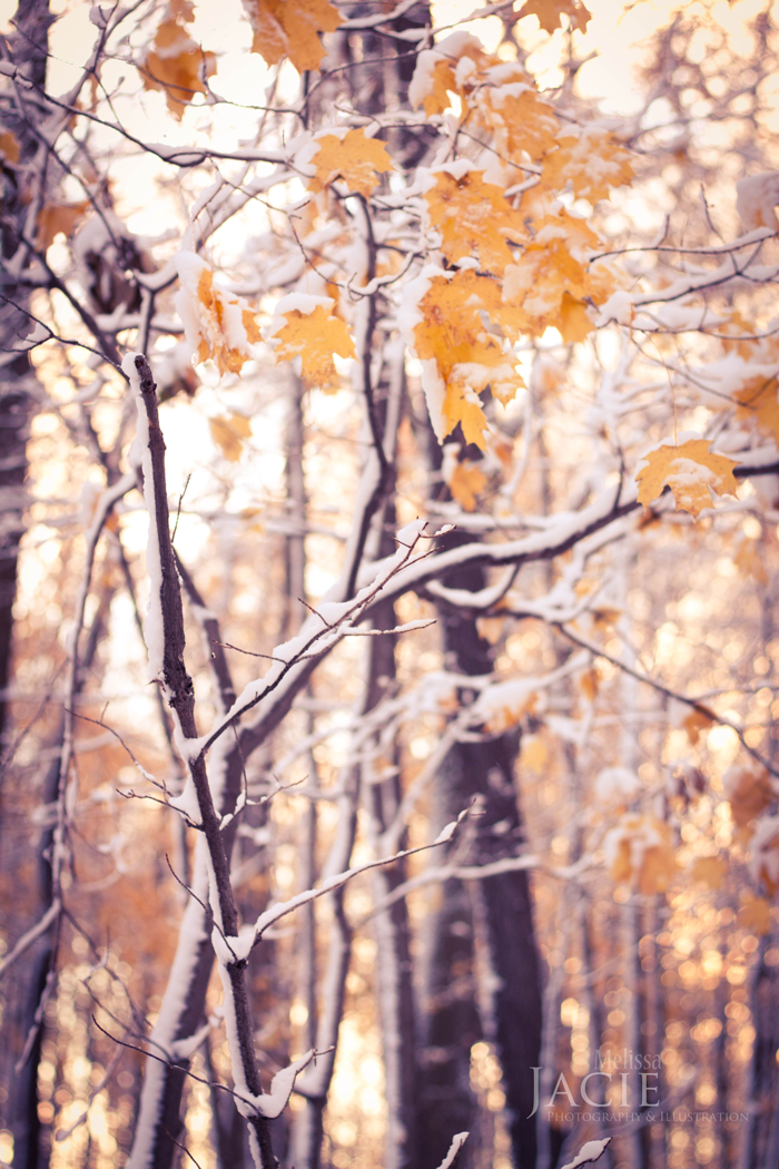 October-November-2013-4416